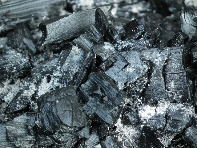 Coal: currently supplying more than 40 percent of the world electricity consumption, providing an essential 70 percent input of world steel production, and representing approximately 30 percent of the global primary energy supply.