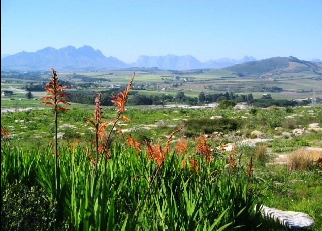 Bracken Nature Reserve was named as the reserve of 2014 by the city's Environmental Resource Management Department.