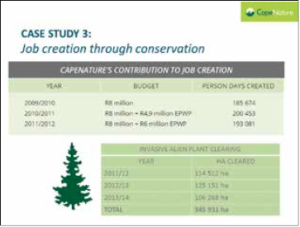 Figure 8: CapeNature's contribution to job creation