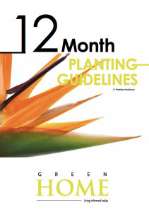 Download the Green Home 12 month planting chart here