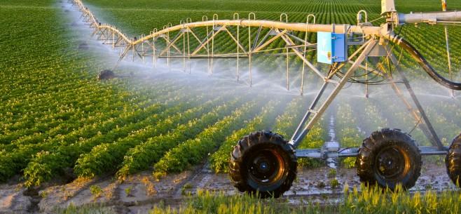 irrigationA