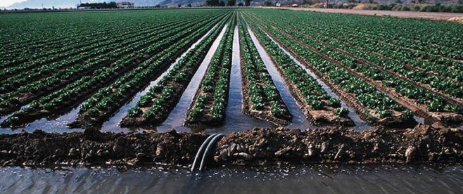 IrrigationFarming