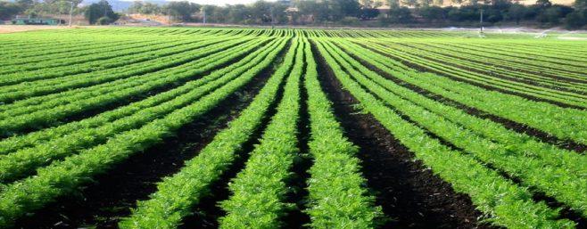 agriculturefarmers