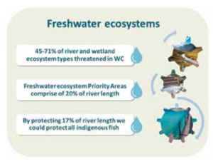 Figure 5: Due to the semi-arid nature of the South African and Western Cape Province landscape, conservation of freshwater ecosystems has become increasingly important.